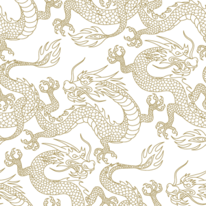 Dragon Pattern